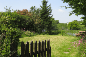 Wilton Mill farm Garden