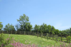 Wilton Mill Surrouding fields