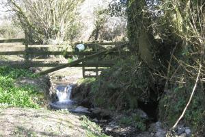 Wilton Mill Stream
