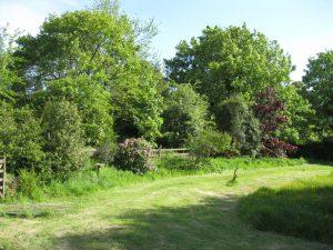 Wilton Mill Fields 2